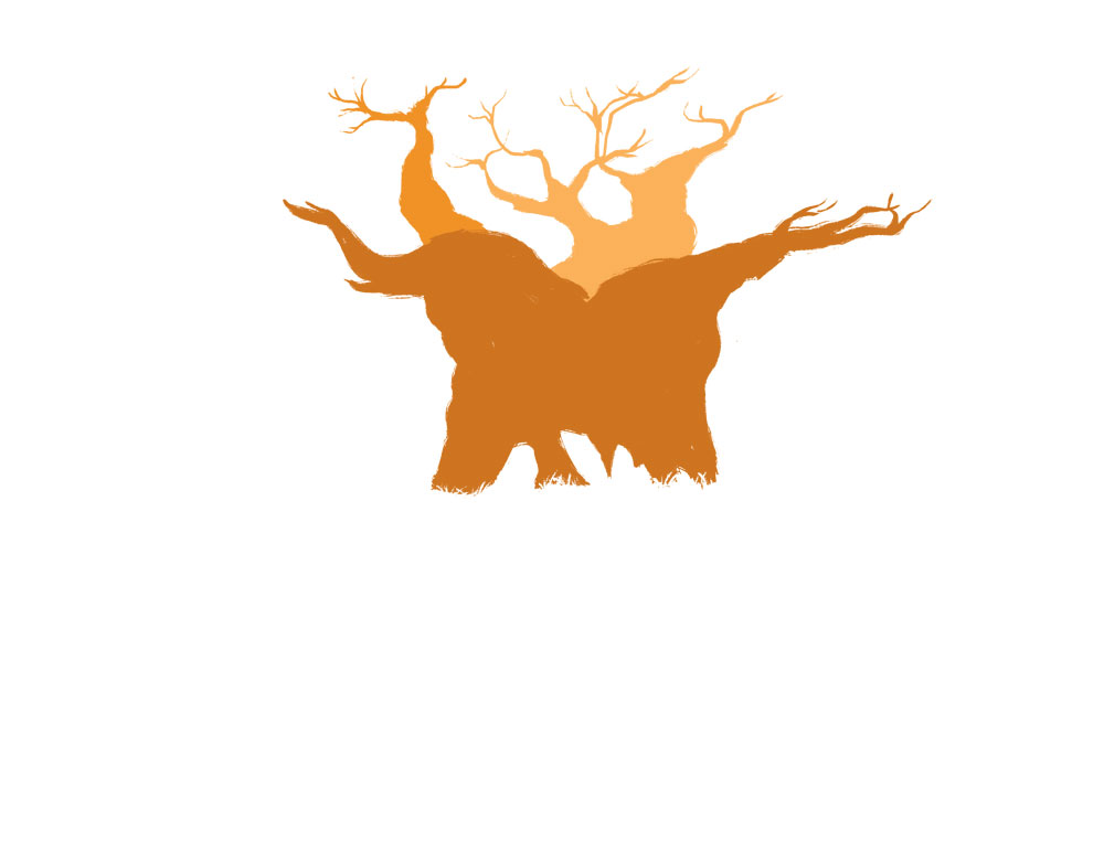 Baobab Tree Drawing.