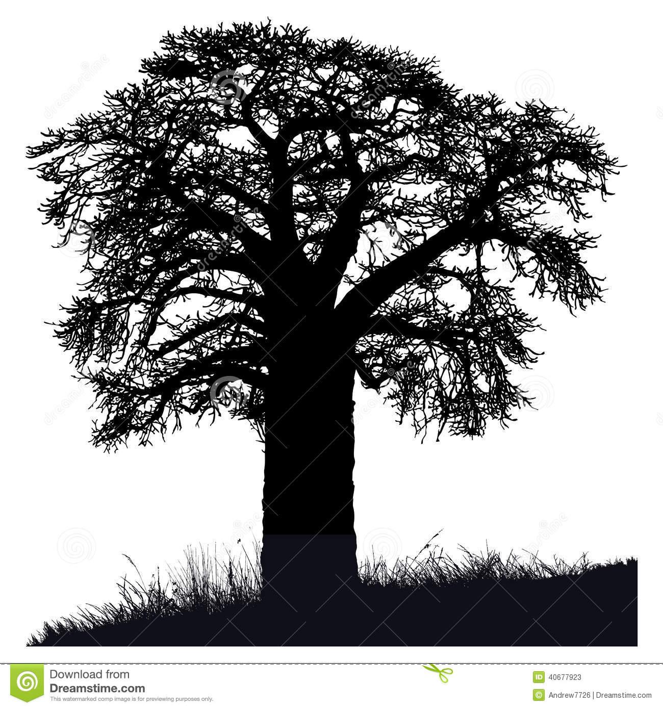 Baobab tree clipart black and white.