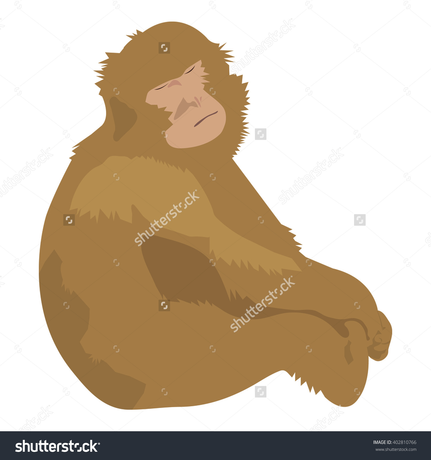Isolated Hand Drawn Brown Barbary Macaque Stock Vector 402810766.