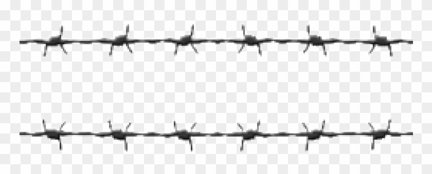 Barbwire Png Hd 765x.