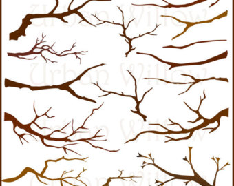 Rustic Tree Branches Clipart