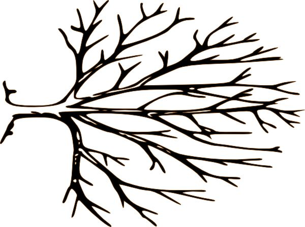 Black And White Bare Tree Clipart.