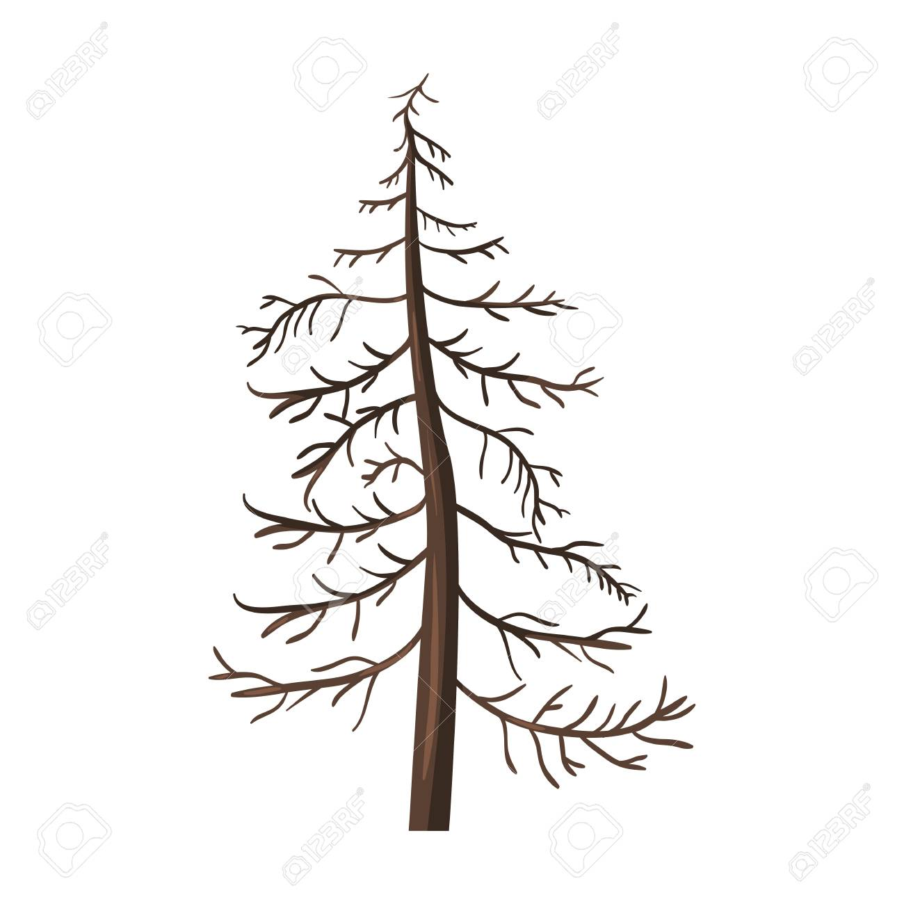 Vector Single Cartoon Brown Bare Pine Tree on White Background.