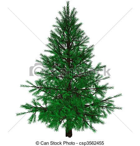 Bare Christmas tree.