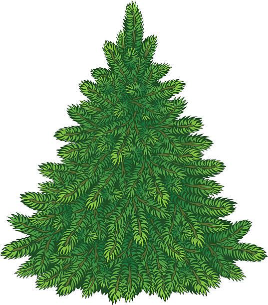 Best Christmas Tree Bare Illustrations, Royalty.