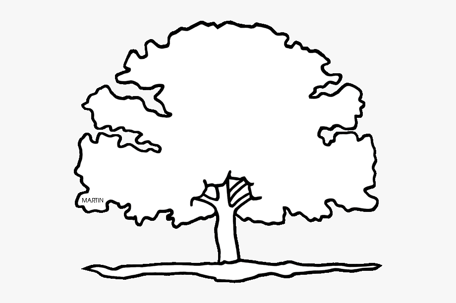 Resume Clipart Red Oak Tree.