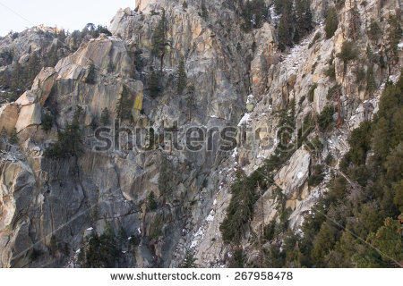 Bare Vegetation Stock Photos, Images, & Pictures.