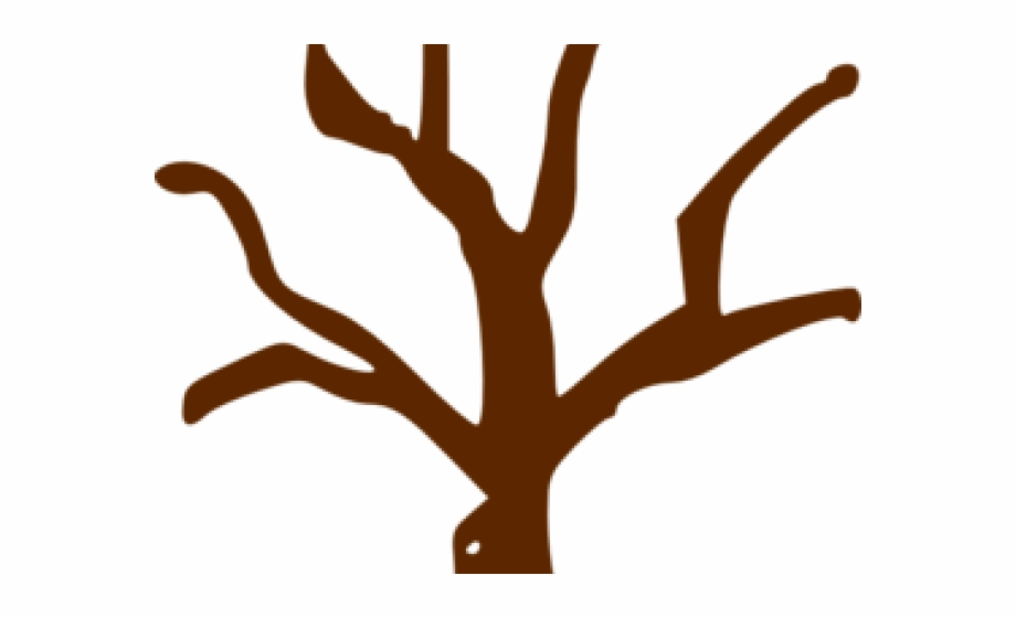 Branch Clipart Tree Trunk.