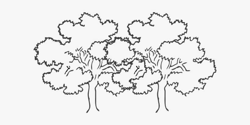 Bare Tree Clipart Black And White Png.