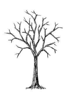 Bare Tree Clipart Black And White.