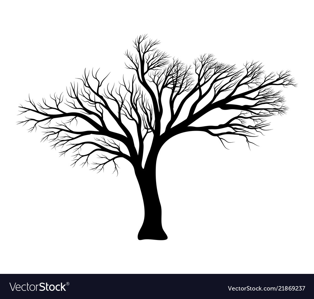 Bare tree silhouette symbol icon design.
