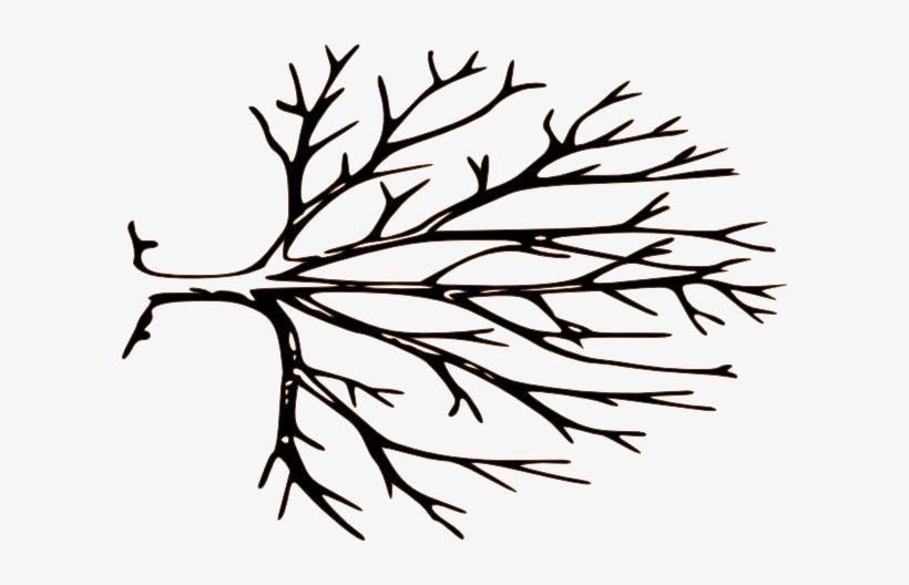 Pix For Bare Tree Stencil.