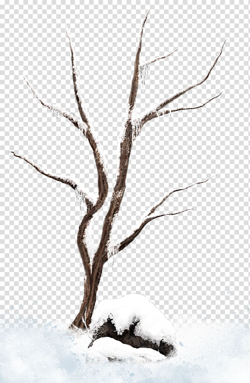 Bare tree covered with snow, Tree Branch Snow , Brown Winter.