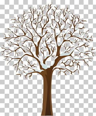 109 snowy Winter Tree PNG cliparts for free download.