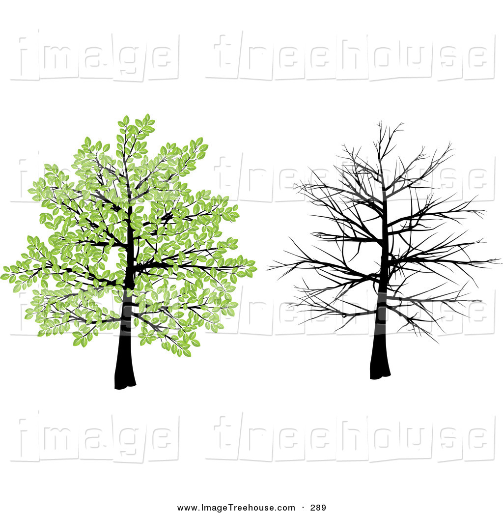 Clipart of a Tree with Green Spring Leaves and with Bare Branches.