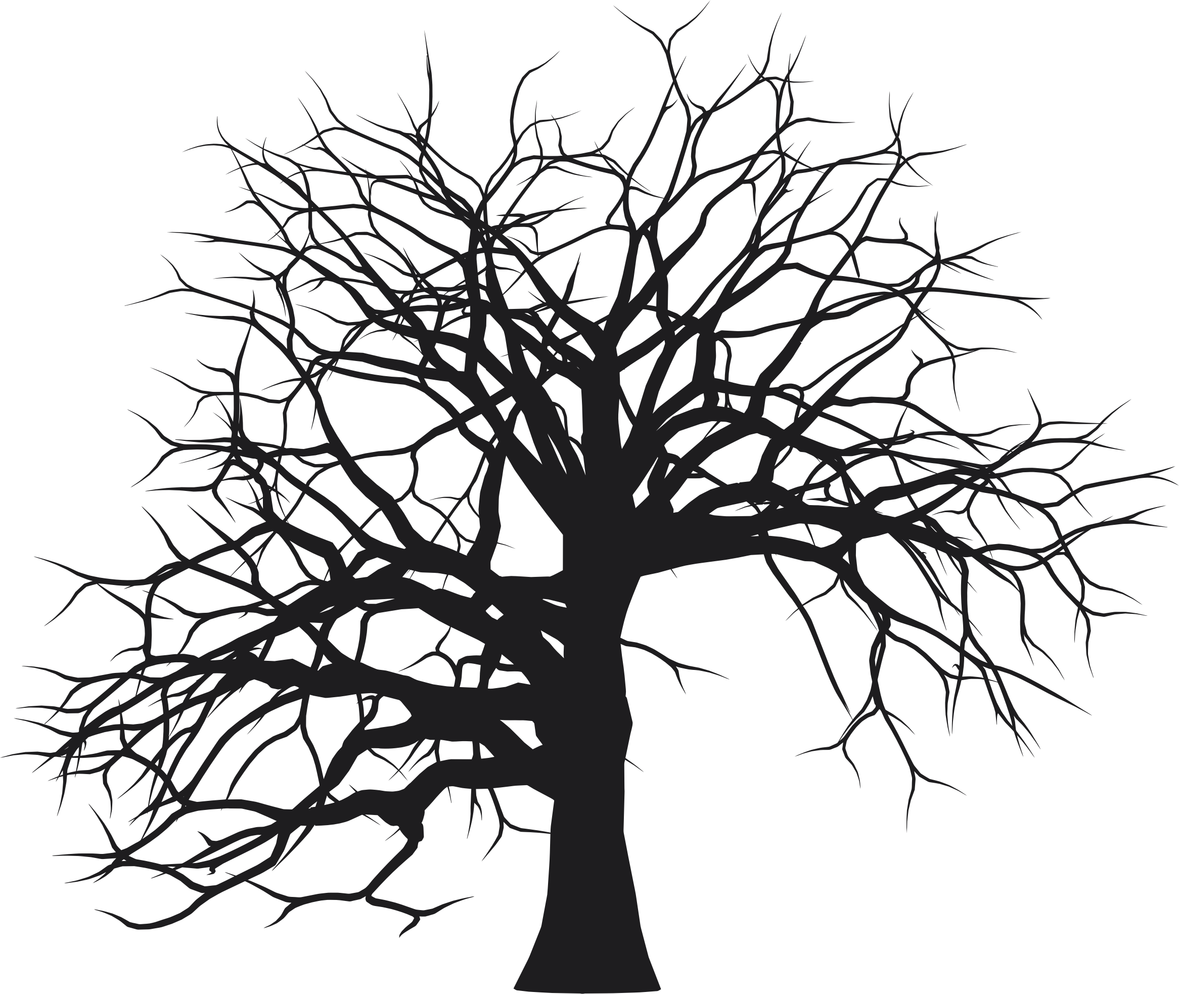 Download Free png tree bark clipart black and white.