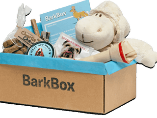 Building the Brand: BarkBox.