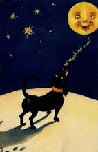 Dog Barking At The Moon.