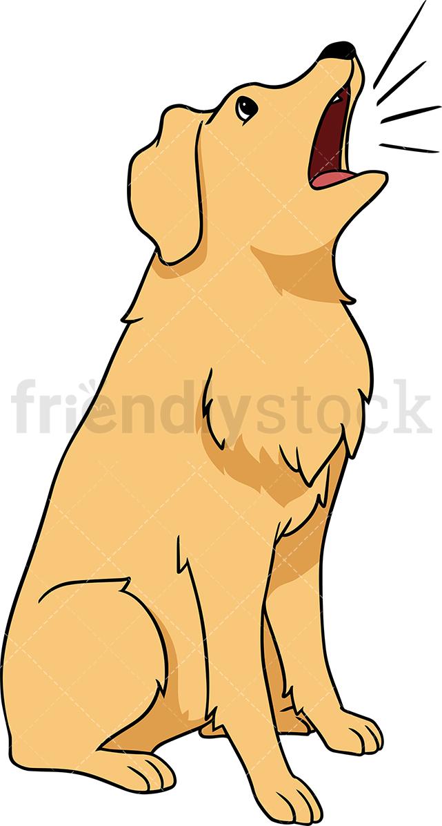 Golden Retriever Dog Barking.