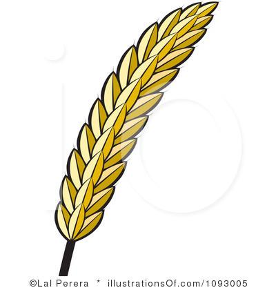 Barley Grain Clipart.
