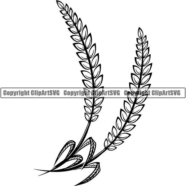 Beer Barley Hops Wheat Leaf Alcohol Liquor Drink Drinking Emblem Logo  ClipArt SVG.