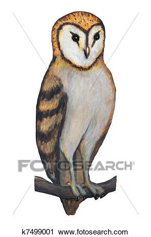 Barn owl Clip Art.