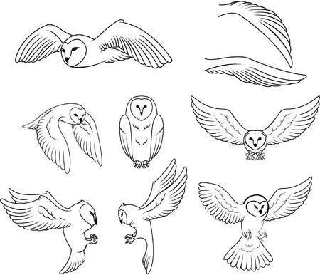 Barn owl clipart 6 » Clipart Portal.