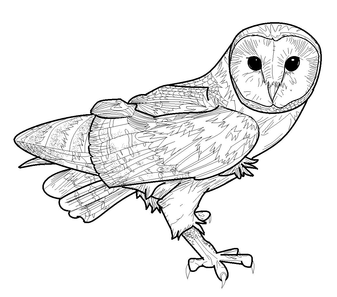 Barn Owl Flying Clip Art.