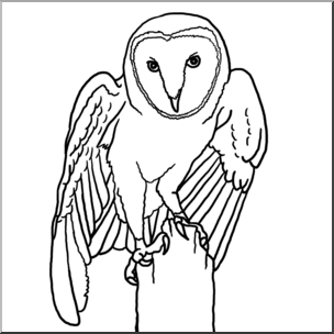 Clip Art: Barn Owl B&W I abcteach.com.