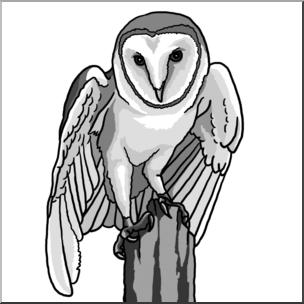 Clip Art: Barn Owl Grayscale I abcteach.com.