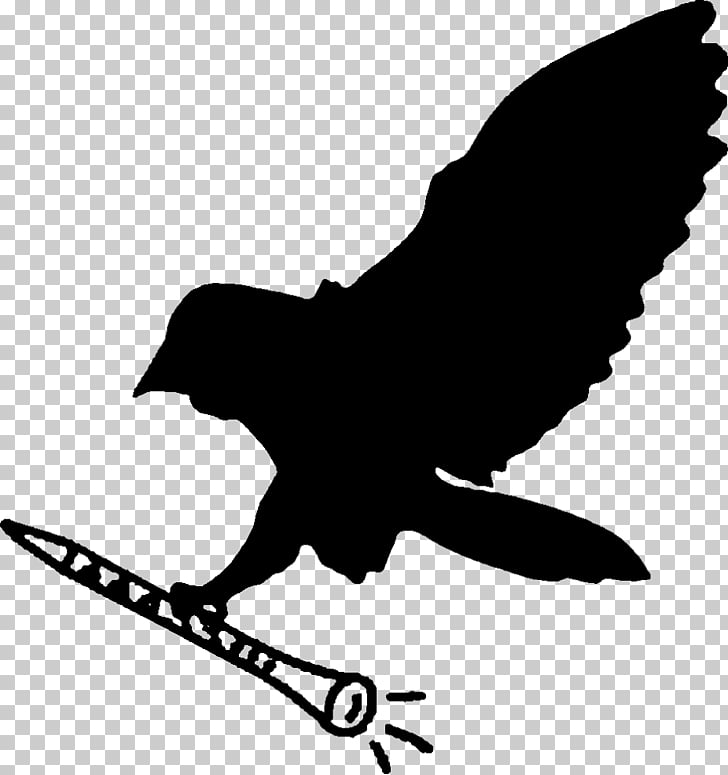 Barn owl Silhouette , jazz PNG clipart.