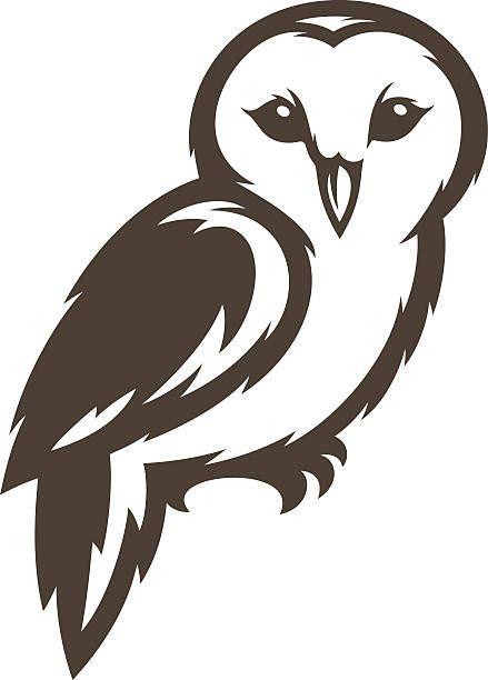 Barn Owl vector art illustration.