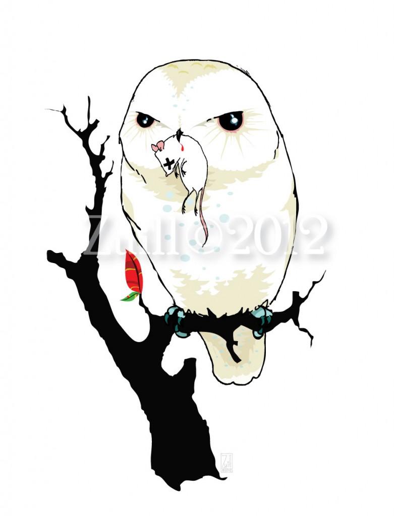 barn owl « Andrea Zuill\'s Blog.