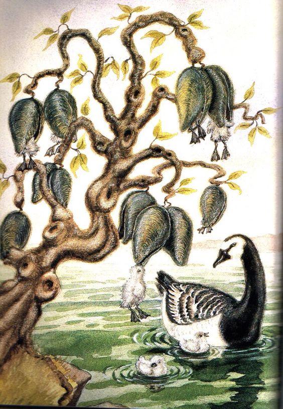 Goose tree.