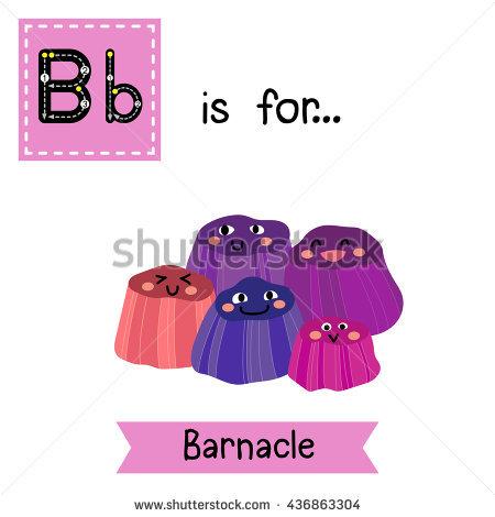 Barnacles Stock Photos, Royalty.