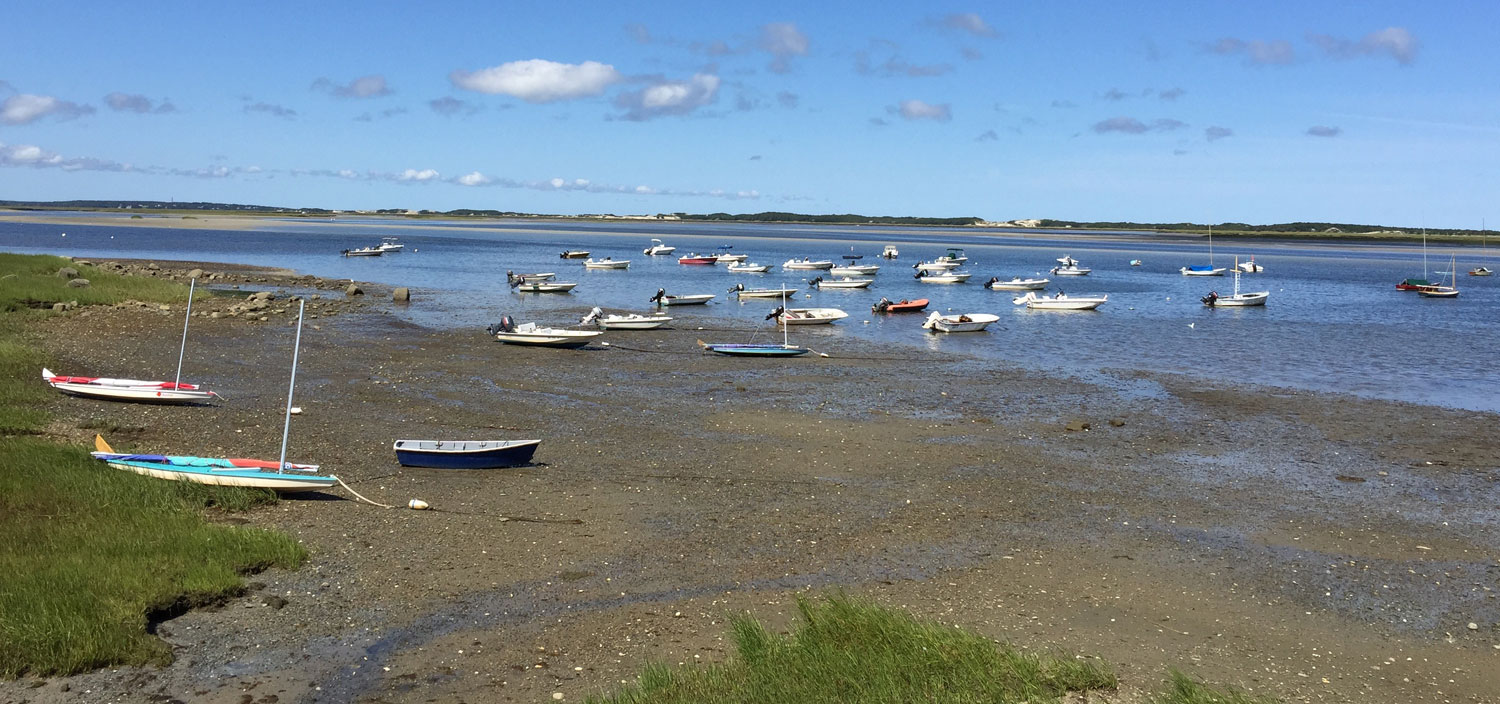 Friends of Barnstable Harbor Preserve and Protect Cape Cod's.