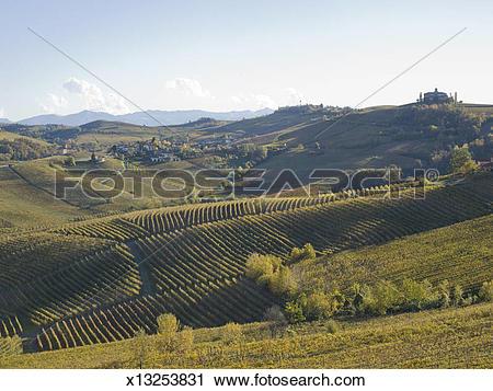 Stock Photography of Barolo landscape x13253831.
