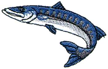 barracuda clipart 4 350x226.