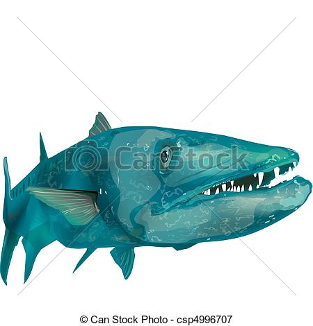 Barracuda Illustrations and Clip Art. 79 Barracuda royalty free.