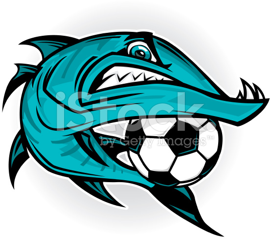 barracuda clipart #27.