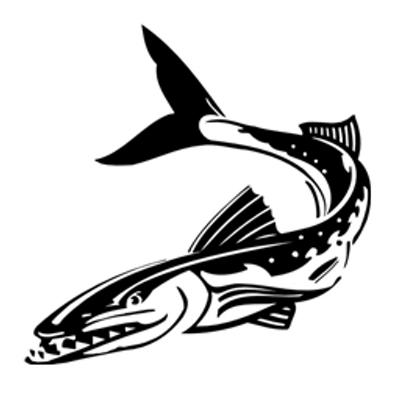 Barracuda (@barracuda415).