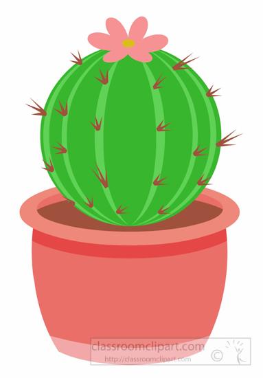 Cactus Clipart : round.