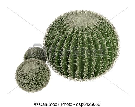 Barrel cactus Illustrations and Clip Art. 48 Barrel cactus royalty.