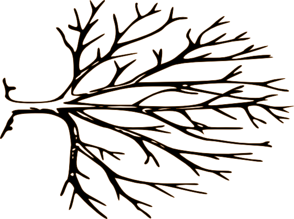 Barren black tree clipart with transparent background.