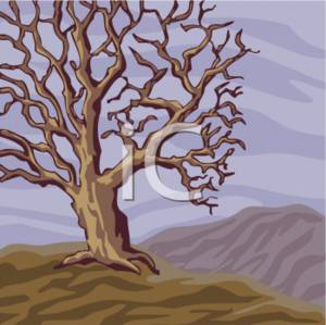 Clipart Illustration of a Barren Tree.