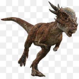 Dracorex PNG and Dracorex Transparent Clipart Free Download..