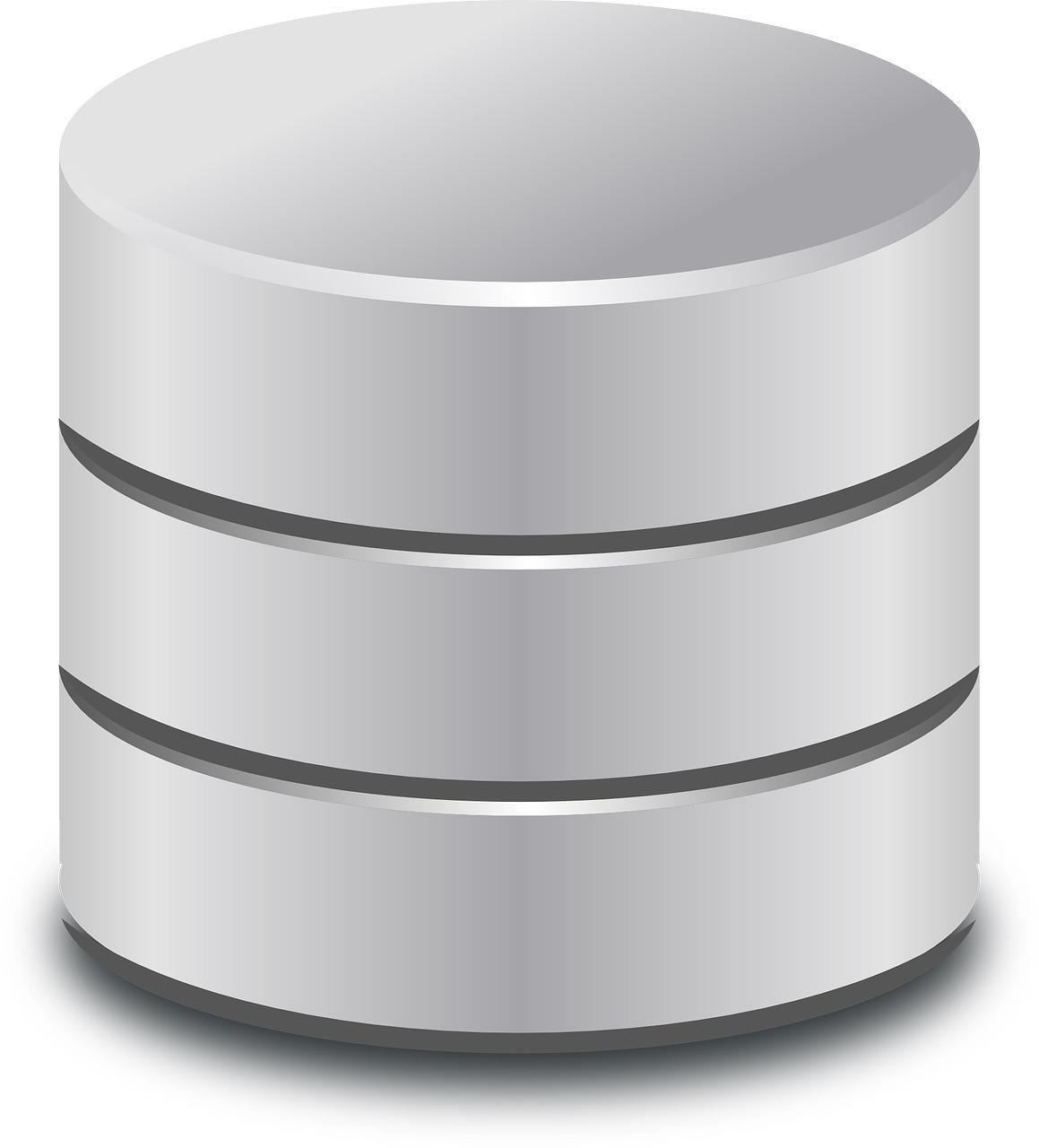 El directivo y la defensa irracional de la base de datos.