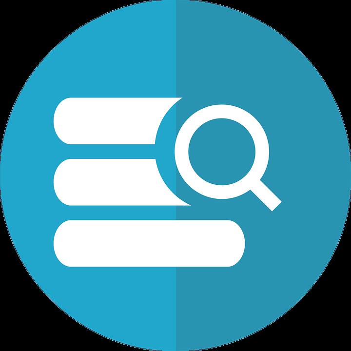 Búsqueda De Base Datos Icono.