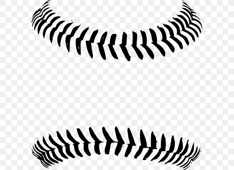 Baseball Stitch Seam Clip Art, PNG, 600x595px, Baseball.