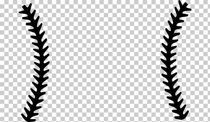 Baseball Stitch Seam Scalable Graphics , Stitches s PNG.